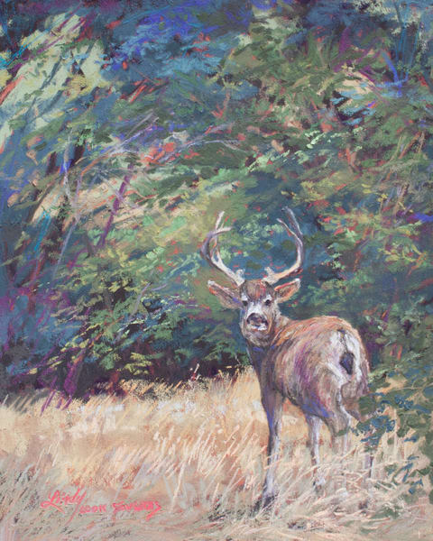 Lindy Cook Severns Art | King of the Mountain, original pastel