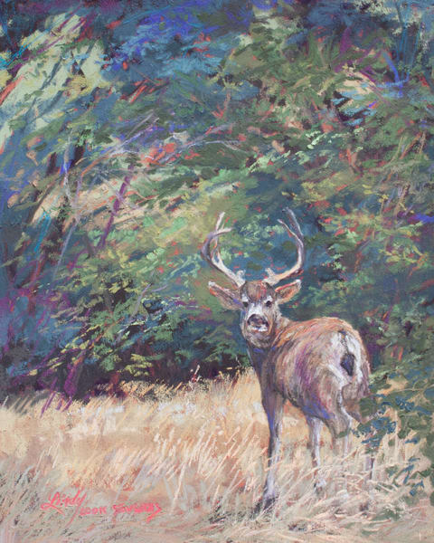 Lindy Cook Severns Art   King of the Mountain, print