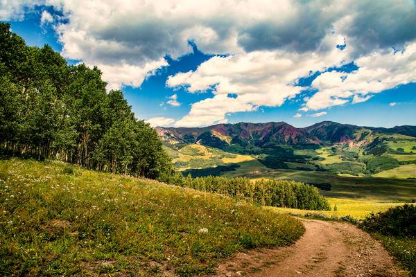 Snodgrass Trail View7089   Photography Art | Koral Martin Healthcare Art