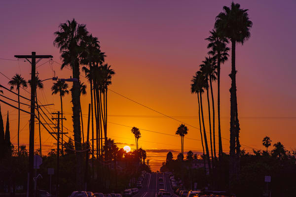 University Heights, San Diego Palm Tree Sunset Wall Art Print by McClean Photography