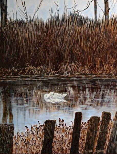Resting Peacefully Art | Lynda Moffatt Fine Arts