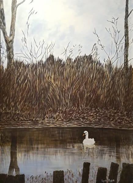 Swan On Guard! Art | Lynda Moffatt Fine Arts