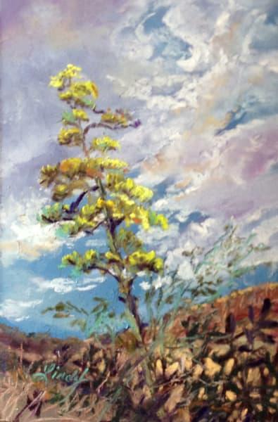 Lindy Cook Severns Art | Century Bloom, original pastel