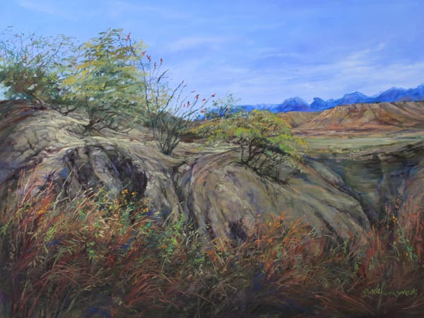 Lindy Cook Severns Art | Trail to the Indian Spring, original pastel