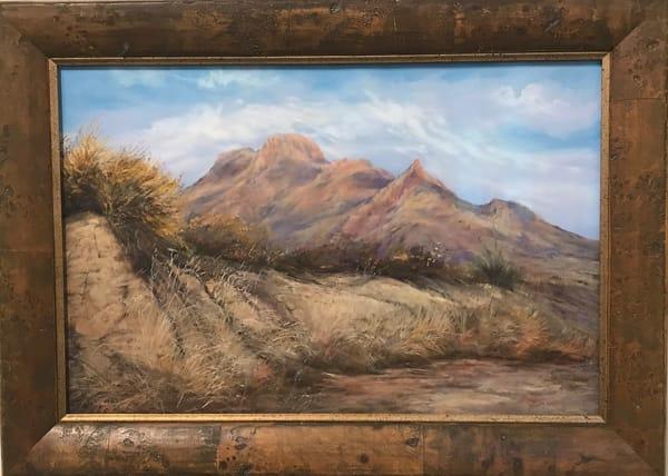 Lindy C Severns Art | Desert Waking, original pastel