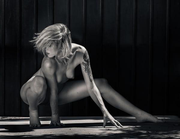 Cherish Crouching Wild Photography Art   Dan Katz, Inc.