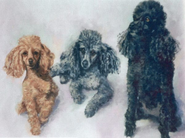 Ginger, Lulu, Charlie, From an Original Oil Painting
