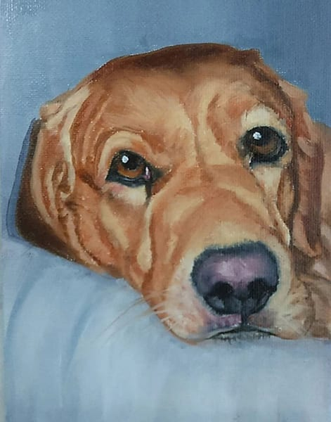 Goldie, From an Original Oil Painting