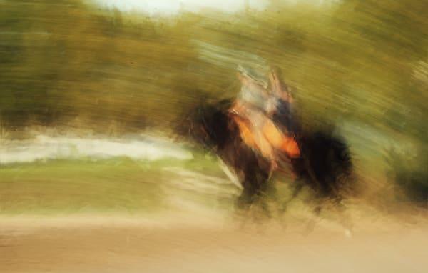 Lady Ride Art | Danny Johananoff