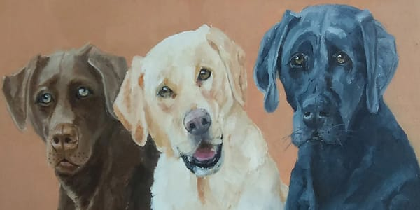 Brownie, Whitie, Blackie (adults) From an Original Oil Painting