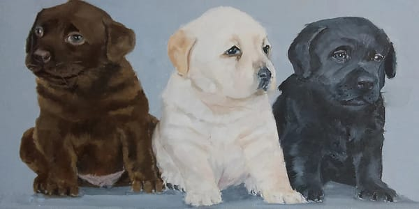 Brownie Whitie Blackie (puppies) From an Original Oil Painting