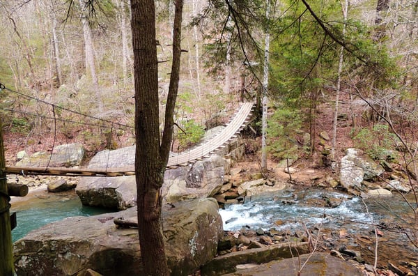 Rainbow Falls Suspension Bridge Photography Art | N2 the Woods Photography
