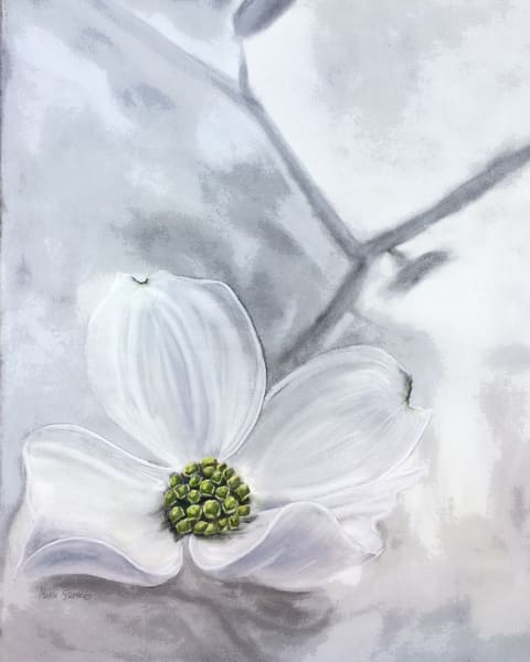 Dogwood Flower With Green Accents, Print Art | Marie Stephens Art