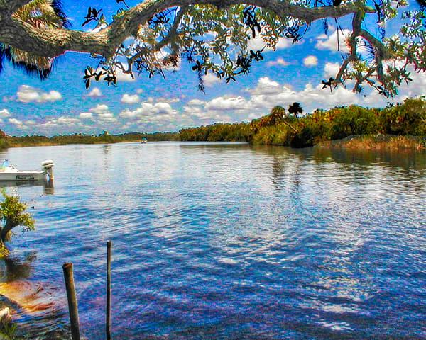 Restful waters of Myakka River, FL