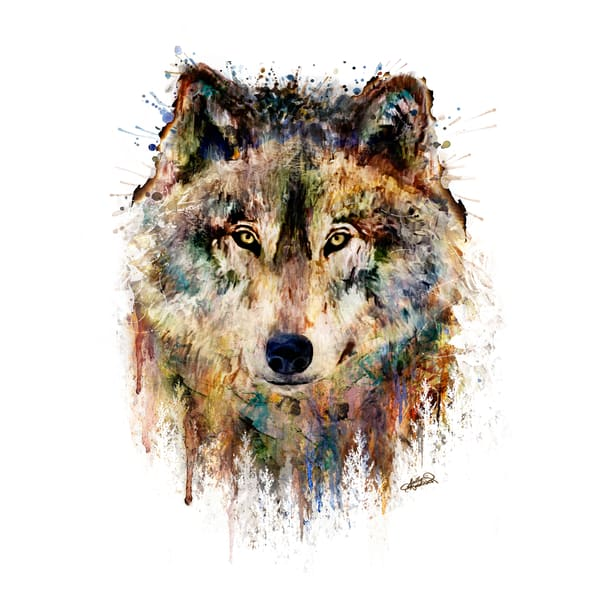 Bold, unique mixed media wolf painting by Sally Barlow.