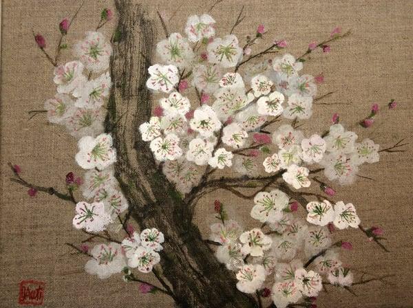 White Plum Blossoms  Art | donnadacuti