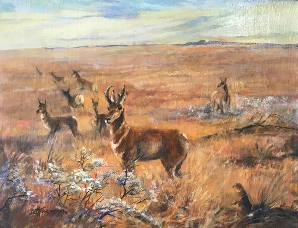 Lindy Cook Severns Art | Living Off the Land, original oil