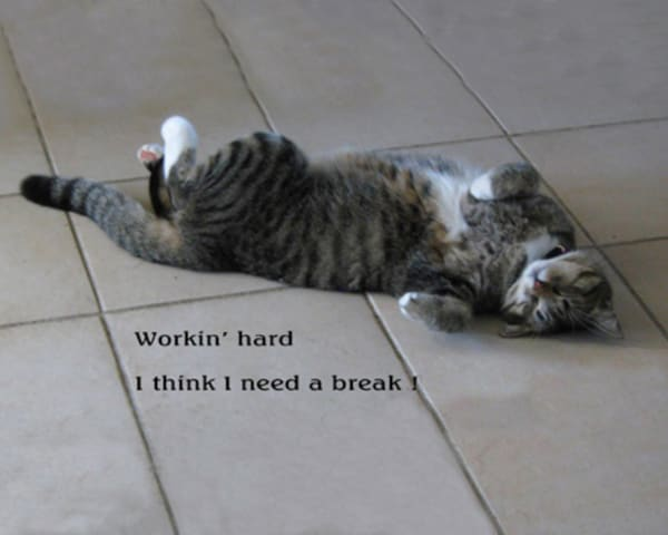 Need A Break! Photography Art | It's Your World - Enjoy!