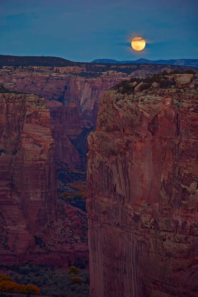 Canyon Moonlight