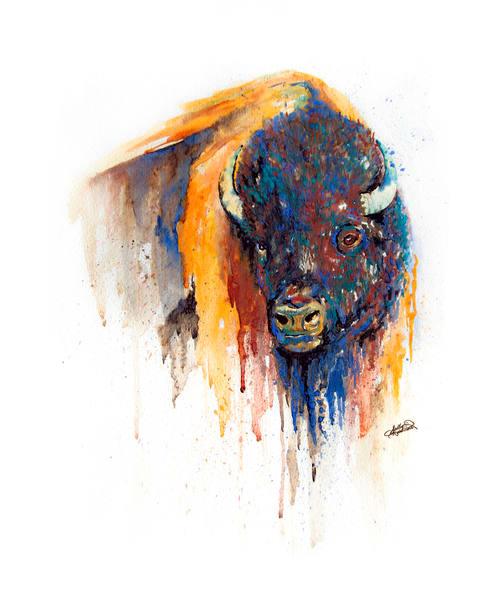 Watercolor Buffalo Print