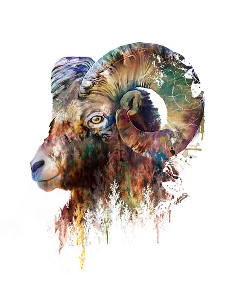 Big Horn Sheep landscape mixed media painting by Sally Barlow