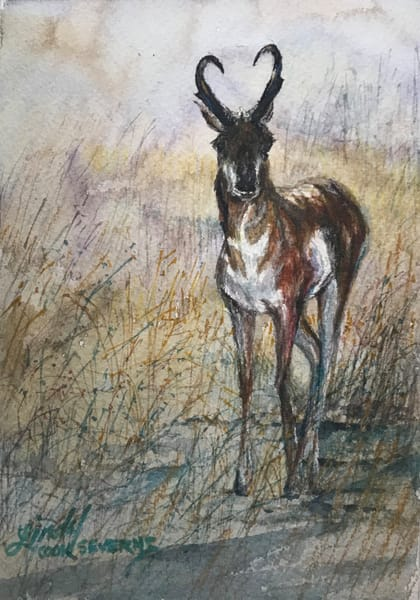 Lindy Cook Severns Art | Here's Looking At You, original watercolor