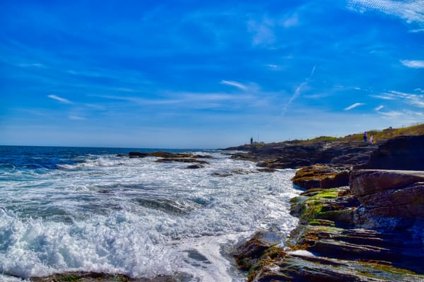 Eastern Beavertail Waves by Keith R Wahl, Made From RI Gallery