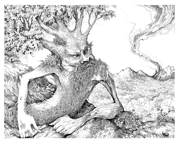 Treebeard limited edition print of a pen & ink drawing