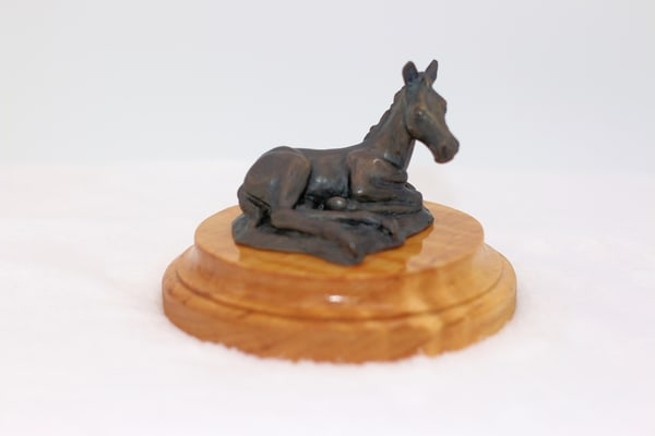 Bronze statue of a foal at rest