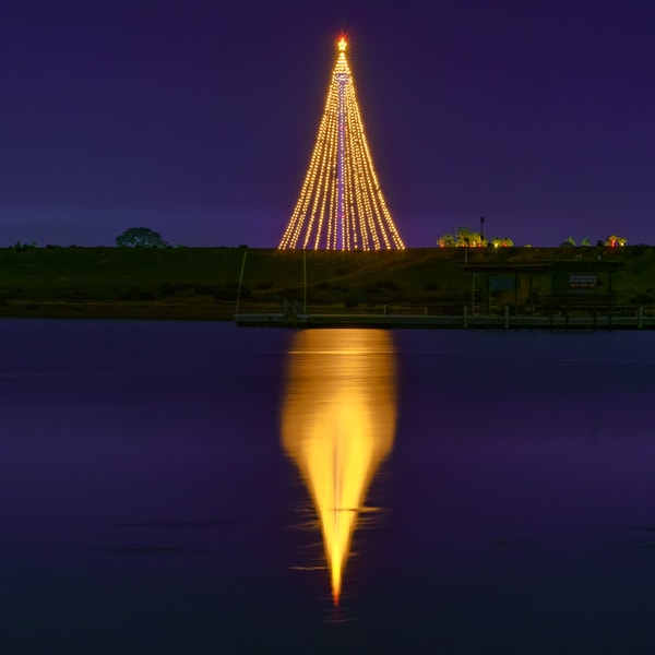 Seaworld, San Diego Tree of Lights by McClean Photography