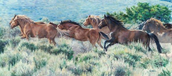 Celebration_Mustangs