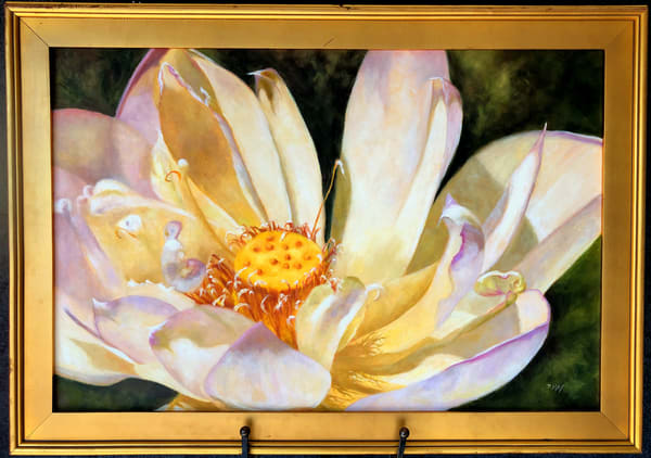 Lotus Heat, Original Oil Painting