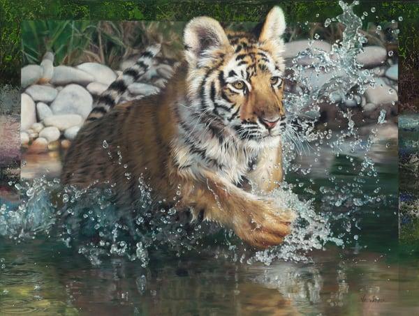 Splash_n_Dash_Tiger