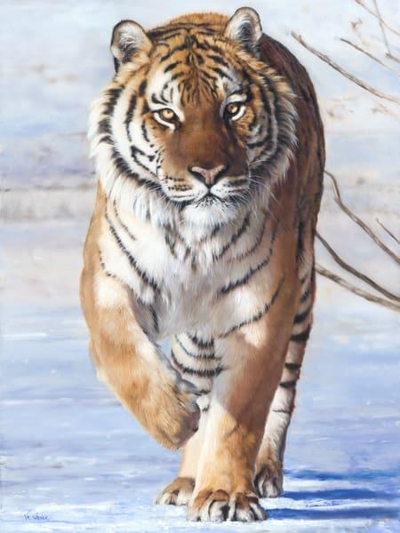 Big Cats & Exotics
