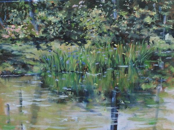 Brookgreen Iris Pond Art | Chris Doyle Fine Arts