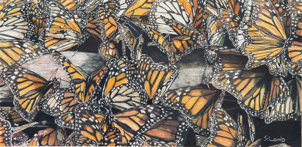 The Butterfly Effect Art   Sherry Lamb Fine Art