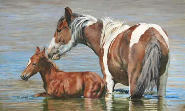 First Bath   Mustangs Art | Art by Val Warner
