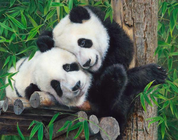 Bamboo_Buddies_Pandas