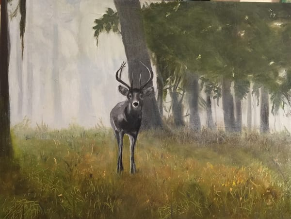 Deer Morning Art | Scott Dyer Fine Art
