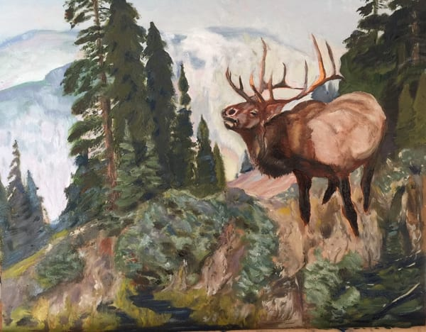 Elk Call  Art | Scott Dyer Fine Art