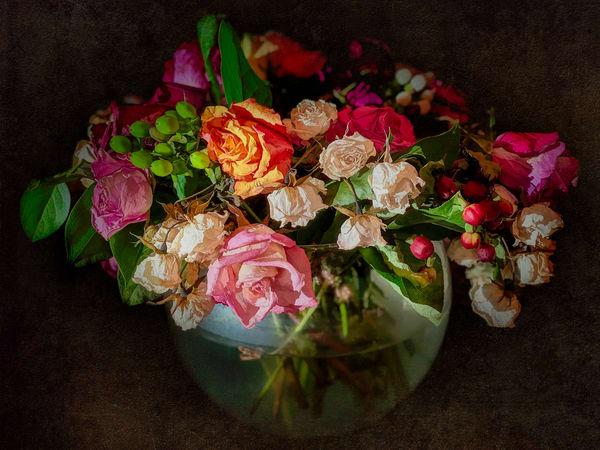 Fading Flowers V1 Photography Art | Carol Brooks Parker Fine Art Photography
