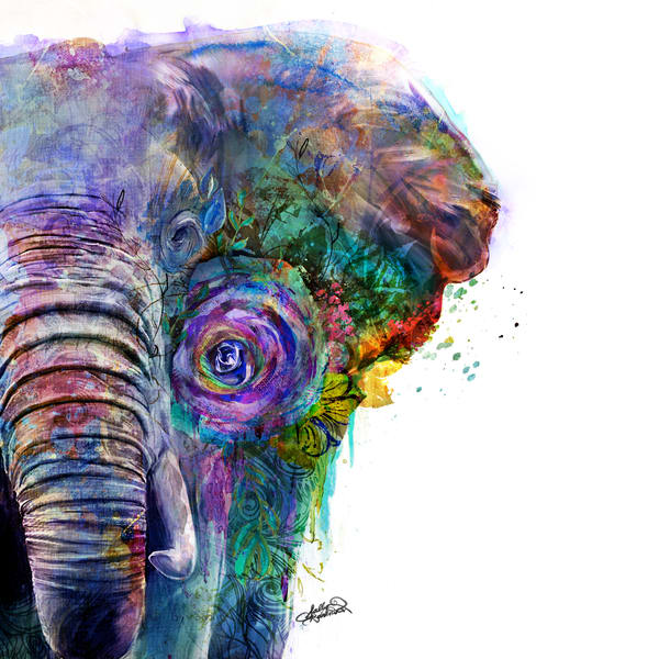 Bright and bold elephant art from the garden of the wild series by Sally Barlow