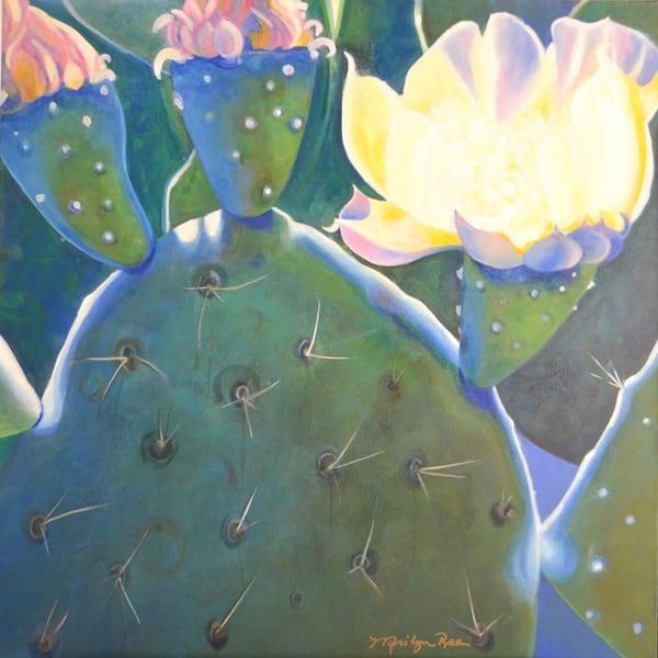 Prickly Profusion Art   Marilyn Rea Nasky Art