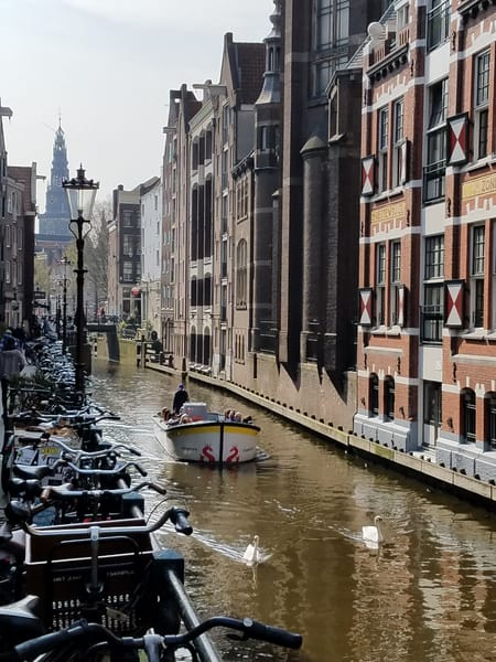 Amsterdam Bikes And Swans Photography Art | Photoissimo - Fine Art Photography