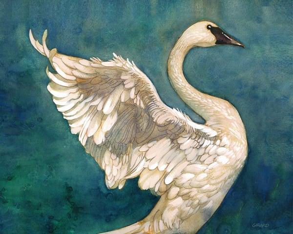 Blue Swan  Art | Studio Girard