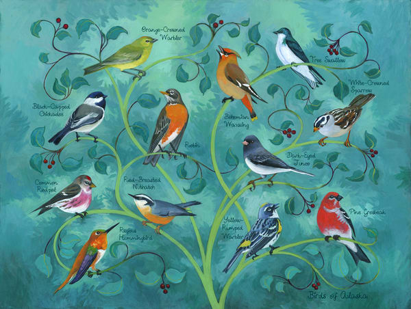 Birds Of Alaska Art | Studio Girard