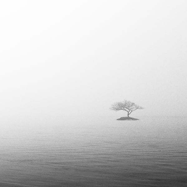 Misty Morning Photograph for Sale as Fine Art