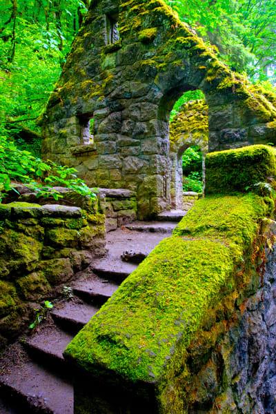 The Stone House, Forest Park Photography Art | Shaun McGrath Photography