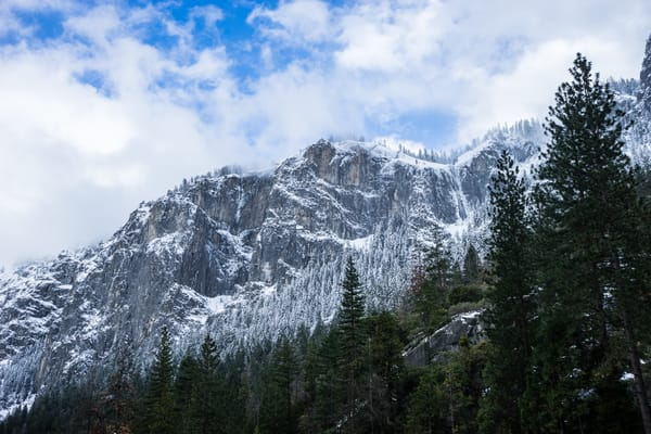 Winter Layers - a snowy winter day landscape in Yosemite National Park photograph print