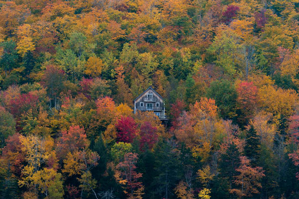 Autumn In Maine Photography Art | Jesse MacDonald Photography
